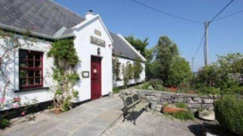 Jane O'Donoghue (2007), Tea & Garden Rooms takes Gold Medal