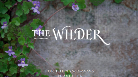 Food & Beverage Supervisor – The Wilder, Dublin
